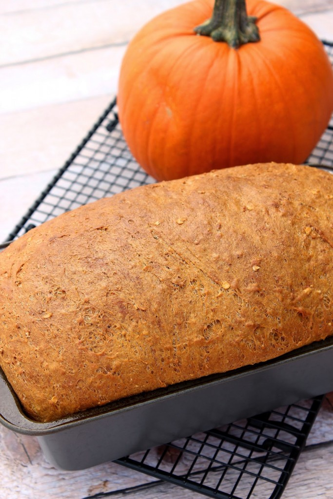 A loaf of ginger pumpkin spice bread on a cooling rack with a pumpkin in the background.