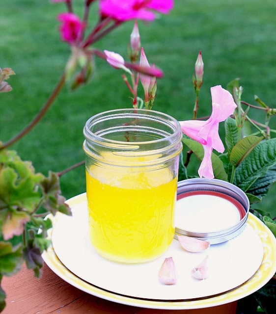 Jar of garlic ghee with pink flowers in the background.