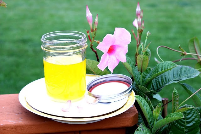 A jar of homemade garlic ghee with a pink tropical flower.