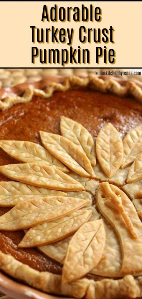 Vertical title text image of a closeup photo of a pumpkin pie with a turkey crust.