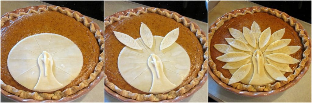 How to make a turkey crust pumpkin pie photo tutorial.