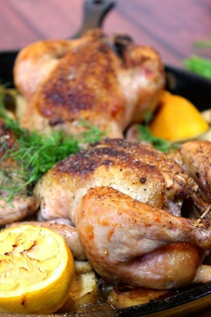 Vertical closeup image of Cornish hens in a skillet with dill and lemon. Valentine's Day Dinner Recipe Roundup.