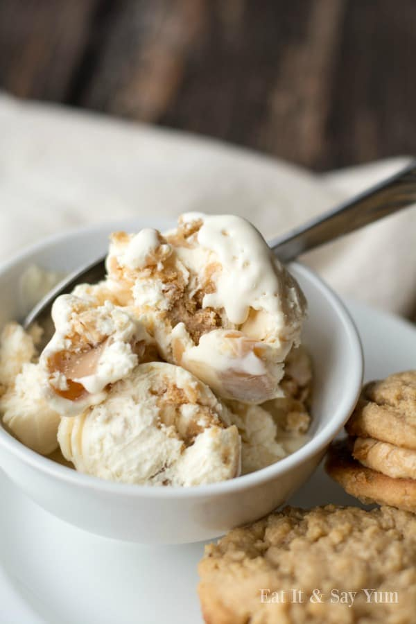 Incredible Ice Cream Recipe Roundup 2018 for Friday's Featured Foodie Feastings - kudoskitchenbyrenee.com