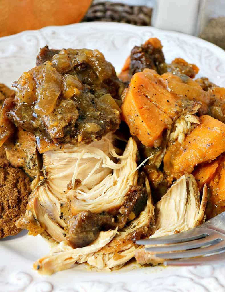 Closeup photo of apple cider braised chicken breasts with sweet potatoes and onions on a white plate.