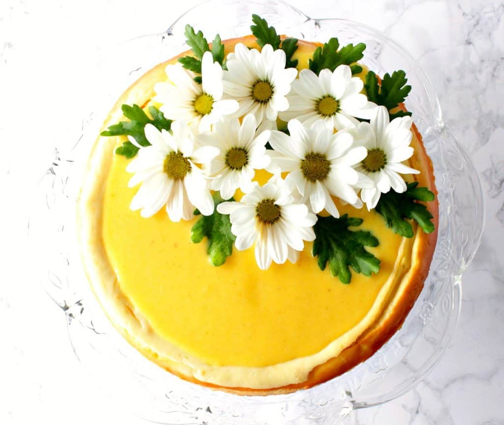 Overhead photo of lemon curd cheesecake with daisies.